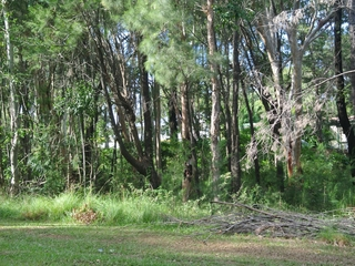 86 High Central Road Macleay Island , QLD, 4184