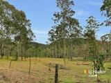 837 Peacock Creek Bonalbo, NSW 2469