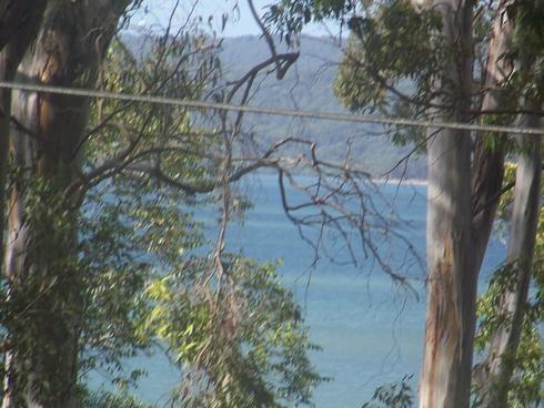 4 PARANKA ST Lamb Island, QLD 4184