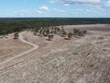 Bucca, QLD 4670
