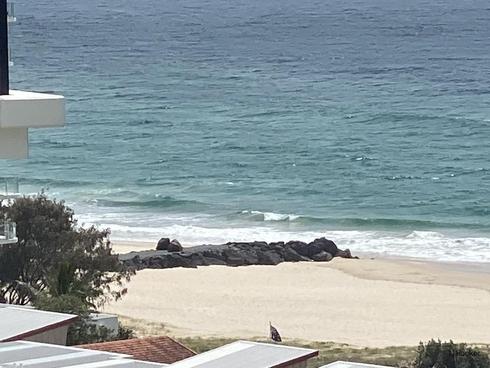 11105/1328 Gold Coast Highway Palm Beach, QLD 4221