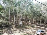 13-15 Delmar Parade Russell Island, QLD 4184