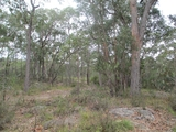 Lot 26 Pollwombra Road Moruya, NSW 2537