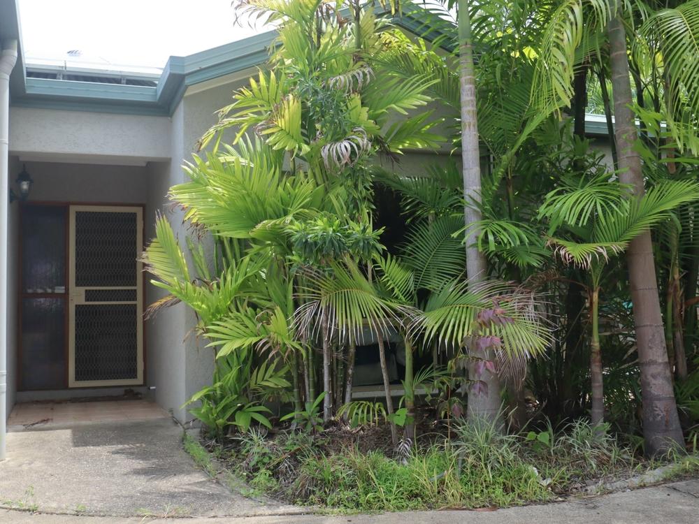 19 Katandra Close Trinity Beach, QLD 4879