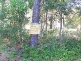 18 Flora Street Lamb Island, QLD 4184