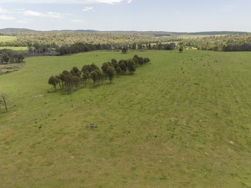 Lot 2 Forester Road North Scottsdale, TAS 7260