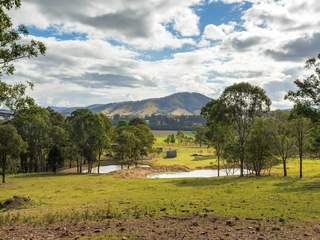 308 Youngs Road Wingham , NSW, 2429
