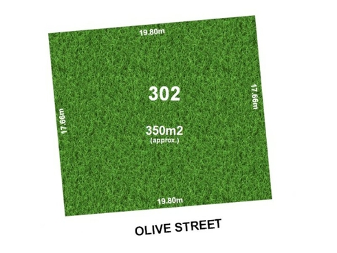 24 Olive Street Seaton, SA 5023