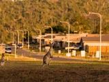 Rockyview, QLD 4701